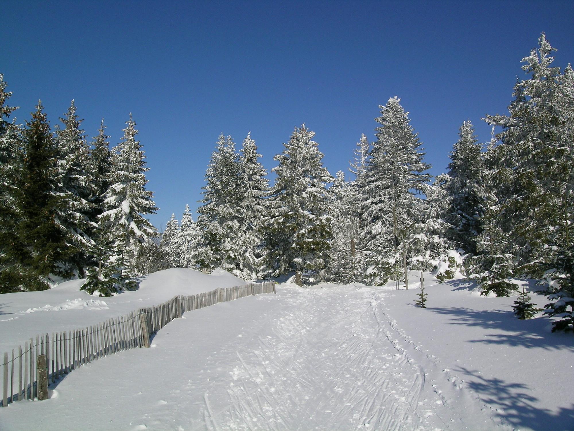 Station pleine nature les bouviers lozere for Piste de ski interieur
